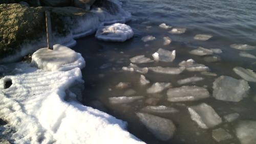 2 января в Анапе у берега замёрзло море